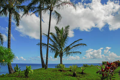 Photograph - Tropical Paradise In Kauai by Lynn Bauer