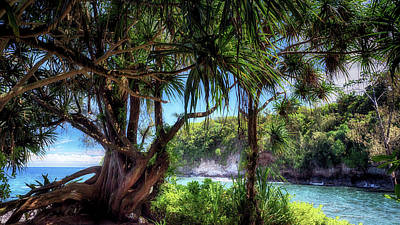 Photograph - Tropical Paradise by Susan Rissi Tregoning