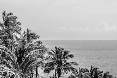Photograph - Tropical Peace In Black And White by Tina Ernspiker