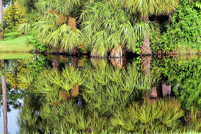 Photograph - Tropical Pond Reflections by William Tasker
