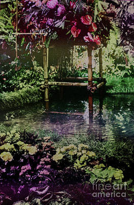 Photograph - Tropical Pool Garden by Sandy Moulder