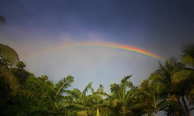 Photograph - Tropical Rainbow by Mark Andrew Thomas