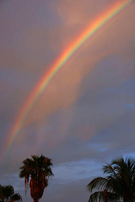 Spot Of Tea Royalty Free Images - Tropical Rainbow Royalty-Free Image by Susanne Van Hulst