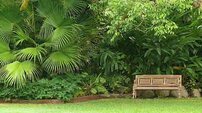 Photograph - Tropical Seat by Evelyn Tambour
