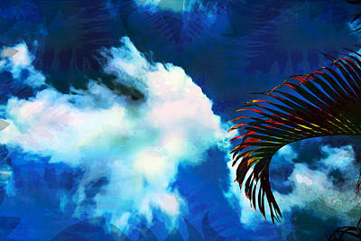 Photograph - Tropical Sky by Susan Vineyard