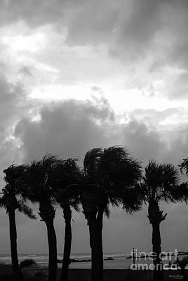 Photograph - Tropical Stormy Skies Grayscale by Jennifer White