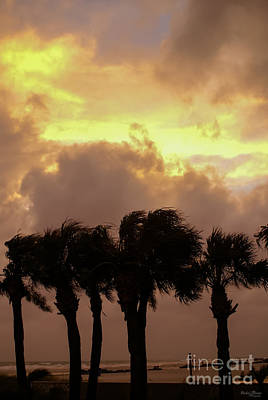 Photograph - Tropical Stormy Skies by Jennifer White