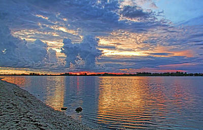 Photograph - Tropical Summer Nights by HH Photography of Florida