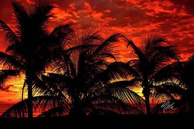 Photograph - Tropical Sunrise by Meta Gatschenberger