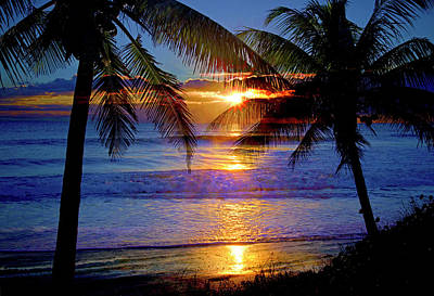 Photograph - Tropical Sunrise Silhouettes by Lynn Bauer