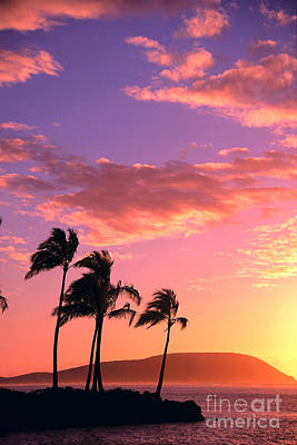 Photograph - Tropical Sunrise by Tomas del Amo - Printscapes