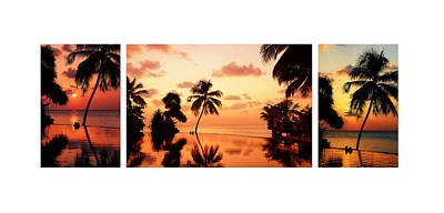Photograph - Tropical Sunset 1. Triptych by Jenny Rainbow