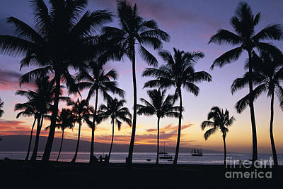 Tropical Sunset Art Print by Bill Schildge - Printscapes