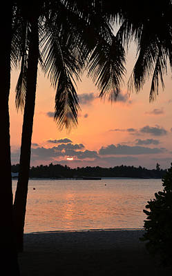 Photograph - Tropical Sunset by Corinne Rhode
