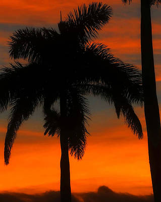 Photograph - Tropical Sunset Cut One by David Lee Thompson