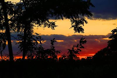 Photograph - Tropical Sunset by Kathryn Meyer
