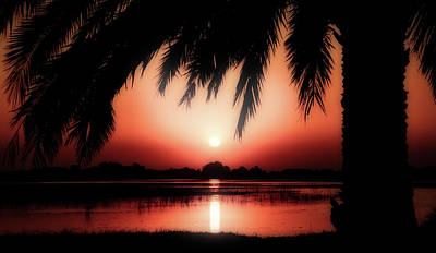 Photograph - Tropical Sunset by Pixabay