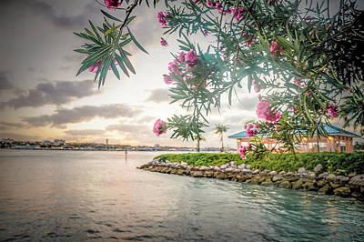 Tropical Sunset Art Print by Rick Grossman