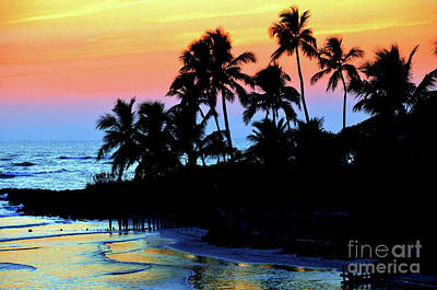Photograph - Tropical  Sunset Silouhette by Elaine Manley