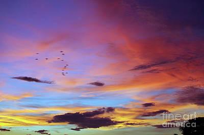 Photograph - Tropical North Queensland Sunset Splendor  by Kerryn Madsen-Pietsch