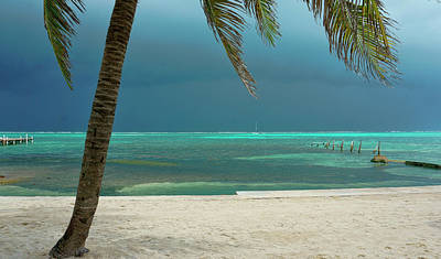 Photograph - Tropical Turquoise Waters Off Ambergris Caye, Belize by Waterdancer