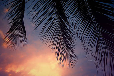 Photograph - Tropical Twilight - Photography by Ann Powell