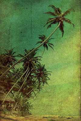Palm Trees Photograph - Tropical Vestige by Andrew Paranavitana
