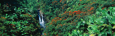 World Peace Photograph - Tropical Waterfall Near Hilo, Hawaii by Panoramic Images
