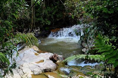 Photograph - Tropical Waterfall Through Forest Jungle Cameron Highlands Malaysia by Imran Ahmed