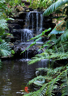 Photograph - Tropical Waterfall With Koi Pond by Carol Groenen
