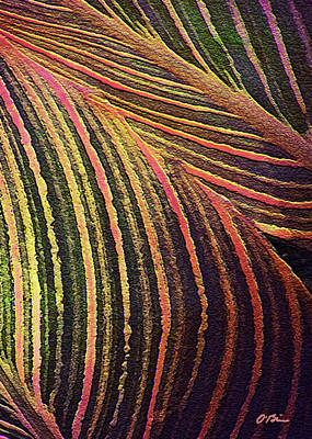Canna Digital Art - Tropicana Leaves by Claudia O'Brien