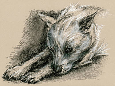 Primitive Drawing - Troubled Pup by MM Anderson