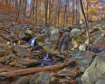 Photograph - Trout Brook - Hackelbarney State Park by Allen Beatty