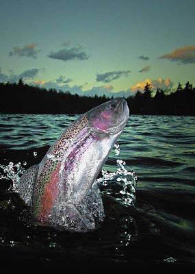 Trout Bum Paradise Art Print by Brian Pelkey