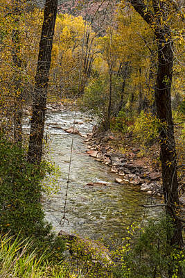 Trout Fishing Stream Crossing Swing Art Print by James BO  Insogna