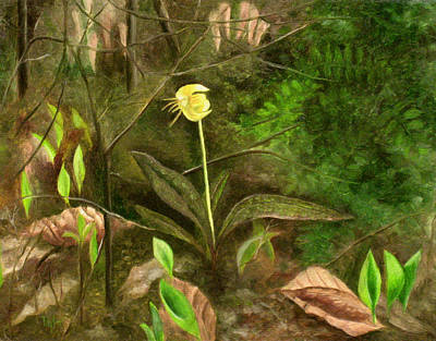 Painting - Trout Lily by FT McKinstry