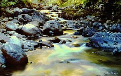 Photograph - Trout Stream by Frank Wilson