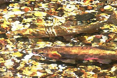 Trout Stream Art Print by Greg Hammond