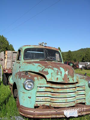 Lady Bug - Truck Montana by Diane Greco-Lesser