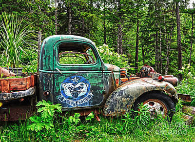Photograph - Truck Planter Crow Creek by Diane E Berry