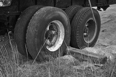 Target Threshold Nature - Truck Tires by Rob Hans