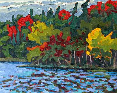Beaver Lake Painting - True Colours by Phil Chadwick
