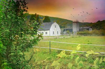 Barn And Silo Photograph - True Heart by Diana Angstadt