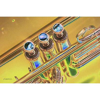 Music Photograph - Trumpet Key By Pamela Williams by Pamela Williams