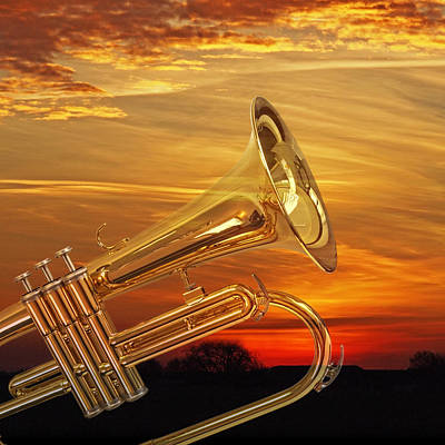 Photograph - Trumpet Sunset by Gill Billington