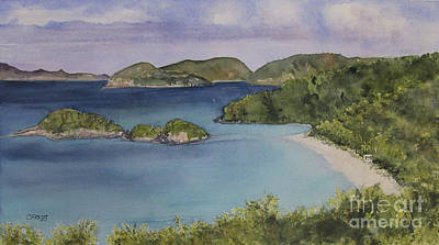 Painting - Trunk Bay Beach St John by Carol Flagg