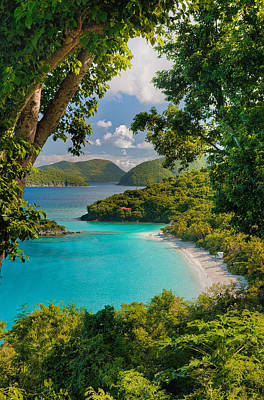Photograph - Trunk Bay by Gary Felton