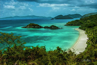 Photograph - Trunk Bay by Mike Braun