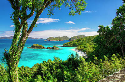 Photograph - Trunk Bay Serenity by Mariola Bitner