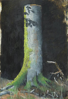Painting - Trunk Of A Beech Tree, Nature Study In Oil Pastels by Martin Stankewitz
